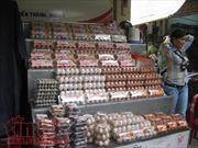 TP Hồ Chí Minh bắt đầu truy xuất nguồn gốc thịt và trứng gia cầm