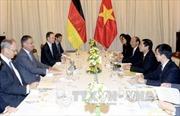 Thúc đẩy quan hệ Việt - Đức phát triển sâu rộng và hiệu quả