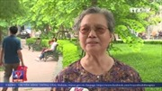 Không có việc trồng lại cây quanh hồ Hoàn Kiếm