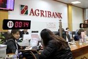 Agribank: Tín dụng tập trung phát triển sản xuất kinh doanh