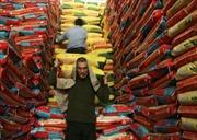 Gạo Mỹ lần đầu được tiếp cận thị trường Trung Quốc