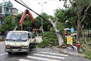 Khắc phục sự cố lưới điện do ảnh hưởng của bão số 4