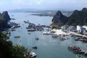 Cưỡng chế công trình xây dựng trái phép trên vịnh Bái Tử Long