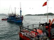 Kịp thời đưa thuyền viên bị bệnh vào đất liền điều trị