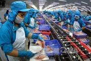 Việt Nam là một trong những nền kinh tế năng động nhất của ASEAN
