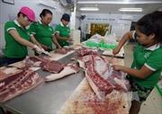 Ngày đầu ra quân giám sát truy xuất nguồn gốc thịt lợn: Các đơn vị kinh doanh chưa tự giác