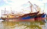 Chấn chỉnh hoạt động đóng tàu vỏ thép theo Nghị định 67
