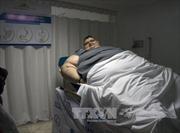 Phát hiện cơ chế 'đốt mỡ' chống béo phì