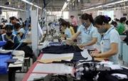 'Có thể điều chỉnh tỷ lệ hưởng lương hưu lao động nữ theo lộ trình'
