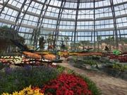 Vinpearl Land mở cửa công viên thực vật 5 châu độc đáo nhất Việt Nam