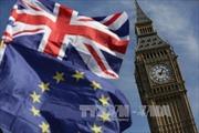 Nước Anh muốn thực hiện 'uyển chuyển' lộ trình Brexit