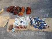 Đánh bạc 'đá gà' hơn nửa tỷ đồng tại Châu Thành, Bến Tre