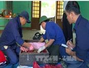 Phát hiện hố chôn hài cốt liệt sỹ tập thể tại Bệnh viện đa khoa khu vực Triệu Hải, Quảng Trị