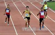 SEA Games 29: Quách Công Lịch 'vuột' HCV 400m rào nam