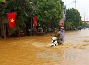 Mưa lớn gây ngập cục bộ tại Tuyên Quang