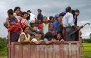 Người dân Myanmar sơ tán do giao tranh tại bang Rakhine