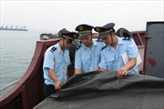Hải quan siết chặt kiểm tra, giám sát tiền chất xuất nhập khẩu
