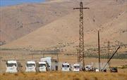Các chỉ huy người nước ngoài của IS đang tháo chạy khỏi Syria