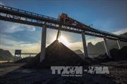 TKV cân đối giữa sản xuất và tiêu thụ để giảm tồn kho than