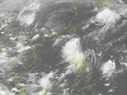 Các tỉnh ven biển từ Quảng Ninh đến Phú Yên chủ động ứng phó với áp thấp nhiệt đới