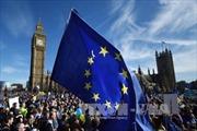 Tuần hành lớn phản đối Brexit tại London