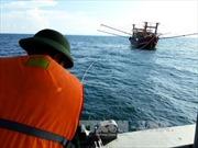 Một ngư dân bị chấn thương sọ não khi câu mực gần đảo Thổ Chu