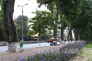 Quy hoạch đô thị Hà Nội: Để không bị 'xé nát' vì lợi ích riêng