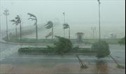 Quý IV, khả năng có 1 - 2 cơn bão và áp thấp nhiệt đới đổ bộ vào đất liền