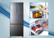 Top 5 tủ lạnh ngăn đá dưới tiện lợi khi sử dụng