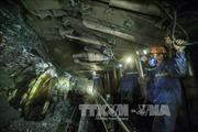 Cơ hội đầu tư vào TCT Khoáng sản TKV và TCT công nghiệp Mỏ Việt Bắc TKV