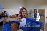 Iraq: Hơn 90% người Kurd bỏ phiếu tán thành nền độc lập