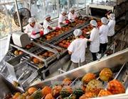 Xuất khẩu rau quả ước đạt 2,64 tỷ USD