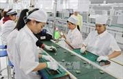 Chỉ số sản xuất ngành chế biến, chế tạo tăng cao nhất trong nhiều năm qua