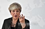 Anh chuẩn bị cho kịch bản đàm phán Brexit với EU đổ vỡ