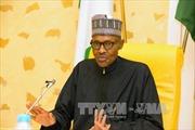 Tổng thống Nigeria yêu cầu điều tra vụ sát hại 18 nông dân ở miền Bắc