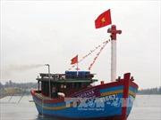 Thừa Thiên - Huế cấp hơn 10 tỷ đồng hỗ trợ tàu cá hoạt động