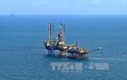 PVN: Các dự án dầu khí ở khu vực miền Trung vẫn triển khai theo kế hoạch