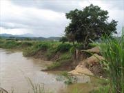Sông Krông Nô bị sạt lở nghiêm trọng