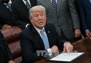 Tổng thống Mỹ công bố những ưu tiên trong chính sách nhập cư