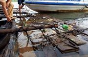 Phát hiện, thu giữ hàng chục phách gỗ lậu trên sông Thu Bồn