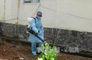 Xuất hiện ổ bệnh bạch hầu tại Quảng Nam