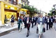 APEC là cơ hội tuyệt vời để quảng bá du lịch Việt Nam