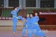 Khai mạc Giải vô địch Vovinam toàn quốc lần thứ 25