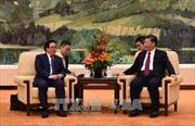 Tổng Bí thư Trung Quốc Tập Cận Bình tiếp Đặc phái viên của Tổng Bí thư Nguyễn Phú Trọng