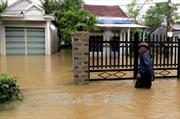 Nhiều tuyến đường và nhà dân ở Phú Yên bị ngập do áp thấp nhiệt đới