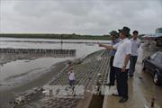 Các địa phương chủ động ứng phó với áp thấp nhiệt đới