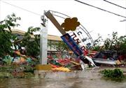 Phú Yên tan hoang sau bão số 12