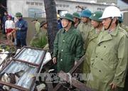 Phó Thủ tướng Trịnh Đình Dũng thị sát tình hình thiệt hại do bão tại Khánh Hòa, Phú Yên