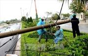 EVN đã khôi phục xong các đường dây 220 kV bị ảnh hưởng bão số 12