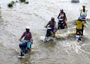MTTQ Việt Nam hỗ trợ 3 tỷ đồng cho các tỉnh bị thiệt hại do bão số 12